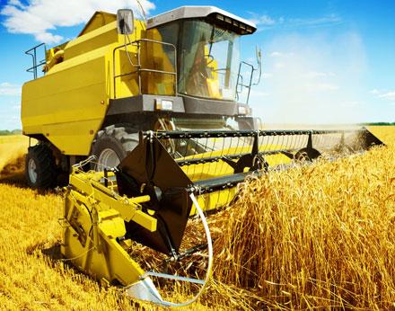 enzed-farming