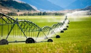 irrigation-australia