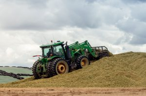 Lallemand silage production