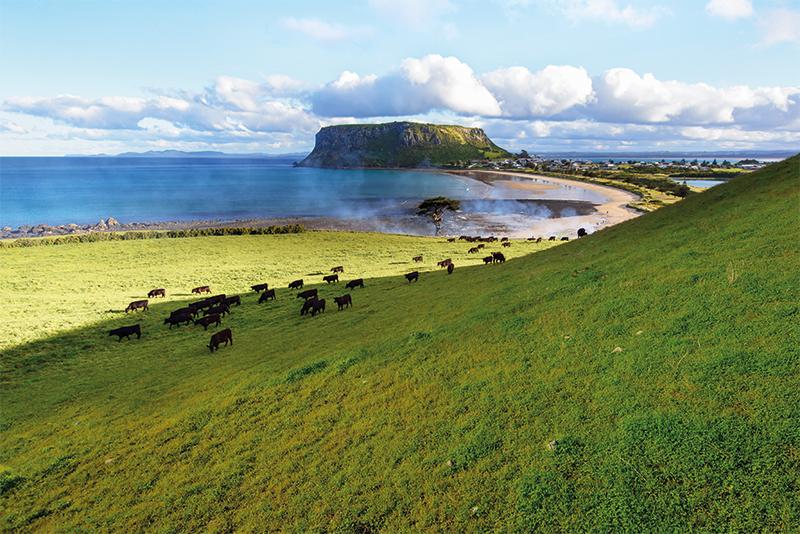Tasmanian farming