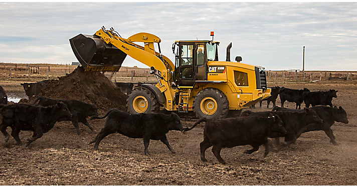 Cat 930M with cattle