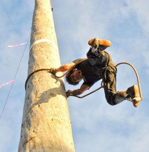 Ag Show Lumberjack