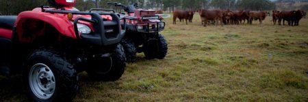 Honda-TRX680FA_ATV