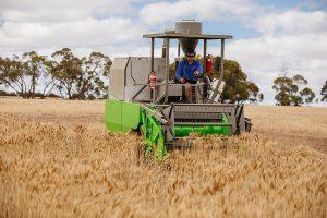 Lithium Australia battery based fertiliser trial